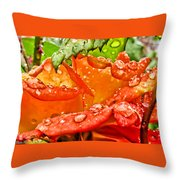 Drenched II Throw Pillow