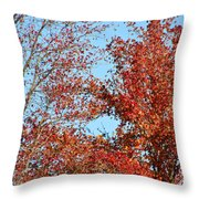 Dressed For Autumn Throw Pillow