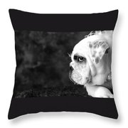 Dressed Up Dog Throw Pillow