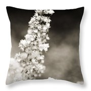 Dried Flower And Crystals 2 Throw Pillow