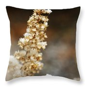 Dried Flower And Crystals Throw Pillow