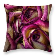 Dried Pink And White Roses Throw Pillow
