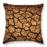 Dried Terrain Throw Pillow