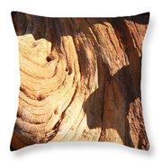 Driftwood 1 Throw Pillow