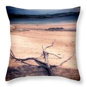 Driftwood 2 Lomo Throw Pillow