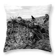 Driftwood And Rocks Throw Pillow