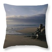Driftwood And Tidal Pools, Victoria Throw Pillow