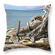 Driftwood II Throw Pillow