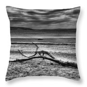 Driftwood Mono Throw Pillow