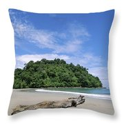 Driftwood On A Tropical Beach Bordered Throw Pillow