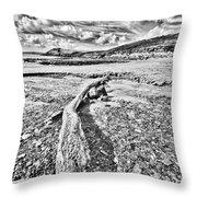 Driftwood Sketch Throw Pillow