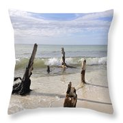 Driftwood Stands Watch Throw Pillow