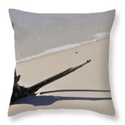 Driftwood Sun Dial Throw Pillow