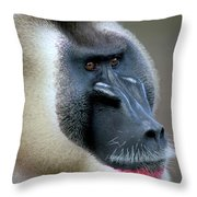 Drill Mandrillus Leucophaeus Adult Throw Pillow
