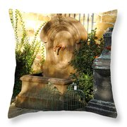 Drinking Fountains For Sale - Broadway Throw Pillow