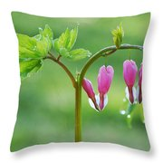 Dripping With Heart Throw Pillow