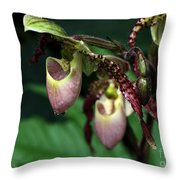 Drippy Lady Slipper Orchids Throw Pillow