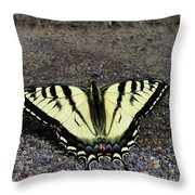 Driveway Butterfly Throw Pillow