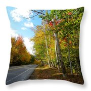 Driving Though The Birches Throw Pillow