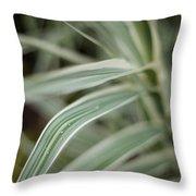 Drops Of Grass Symmetry Throw Pillow