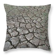 Drought Throw Pillow