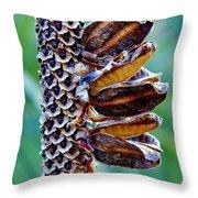 Dry Aloe Vera Flower Throw Pillow