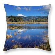 Dry Lagoon Panorama Throw Pillow