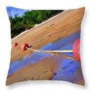 Dry Lake Throw Pillow