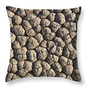 Dry Mud Patterns On The Racetrack Throw Pillow