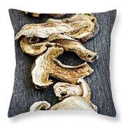 Dry Porcini Mushrooms Throw Pillow by Elena Elisseeva