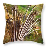 Dry Queen Anns Lace I Throw Pillow