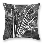 Dry Queen Anns Lace II Throw Pillow