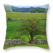 Dry Stone Wall And Twisted Tree Throw Pillow