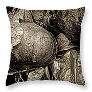 Drying Onions Throw Pillow
