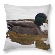 Duck 3 Throw Pillow