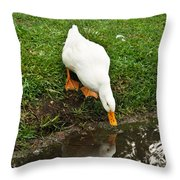 Duck And Refection Throw Pillow