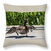 Duck And Run Throw Pillow