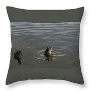 Duck Butt 1560 Throw Pillow