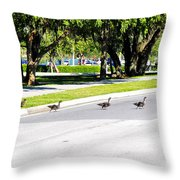 Duck Crossing Throw Pillow