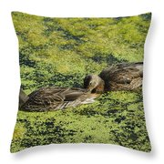 Duck Dinner Throw Pillow