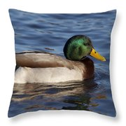 Duck On The Water Throw Pillow