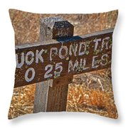 Duck Pond Trail Throw Pillow