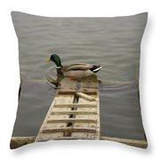 Duck Ramp Throw Pillow