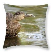 Duck Spits Throw Pillow