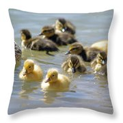 Ducklings 09 Throw Pillow
