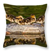 Ducklings Catch Some Rays Throw Pillow