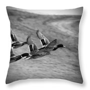 Ducks In Flight V2 Bw Throw Pillow