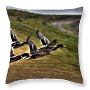 Ducks In Flight V5  Throw Pillow