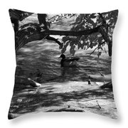 Ducks In The Shade In Black And White Throw Pillow