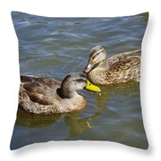 Ducks In The Sun Throw Pillow